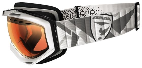 ALPINA Skibrille CYBRIC GTV - Bild: Alpina
