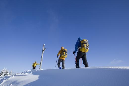 Alpinisto on tour (Foto: Bernd Ritschel)