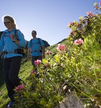 Wanderer im Zillertal - Wanderung zum Geißkopf, Zillertaler Alpen, Tirol, Österreich. - Fotocredit: Mayrhofen